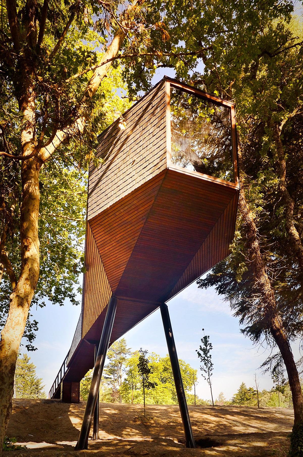 בתי עץ 2