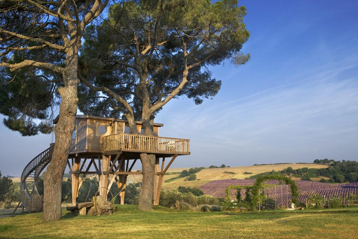 בתי עץ 5