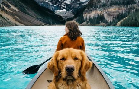 הצלמת הזאת לוקחת את הכלב שלה איתה למסעות צילום. נחמד לא?