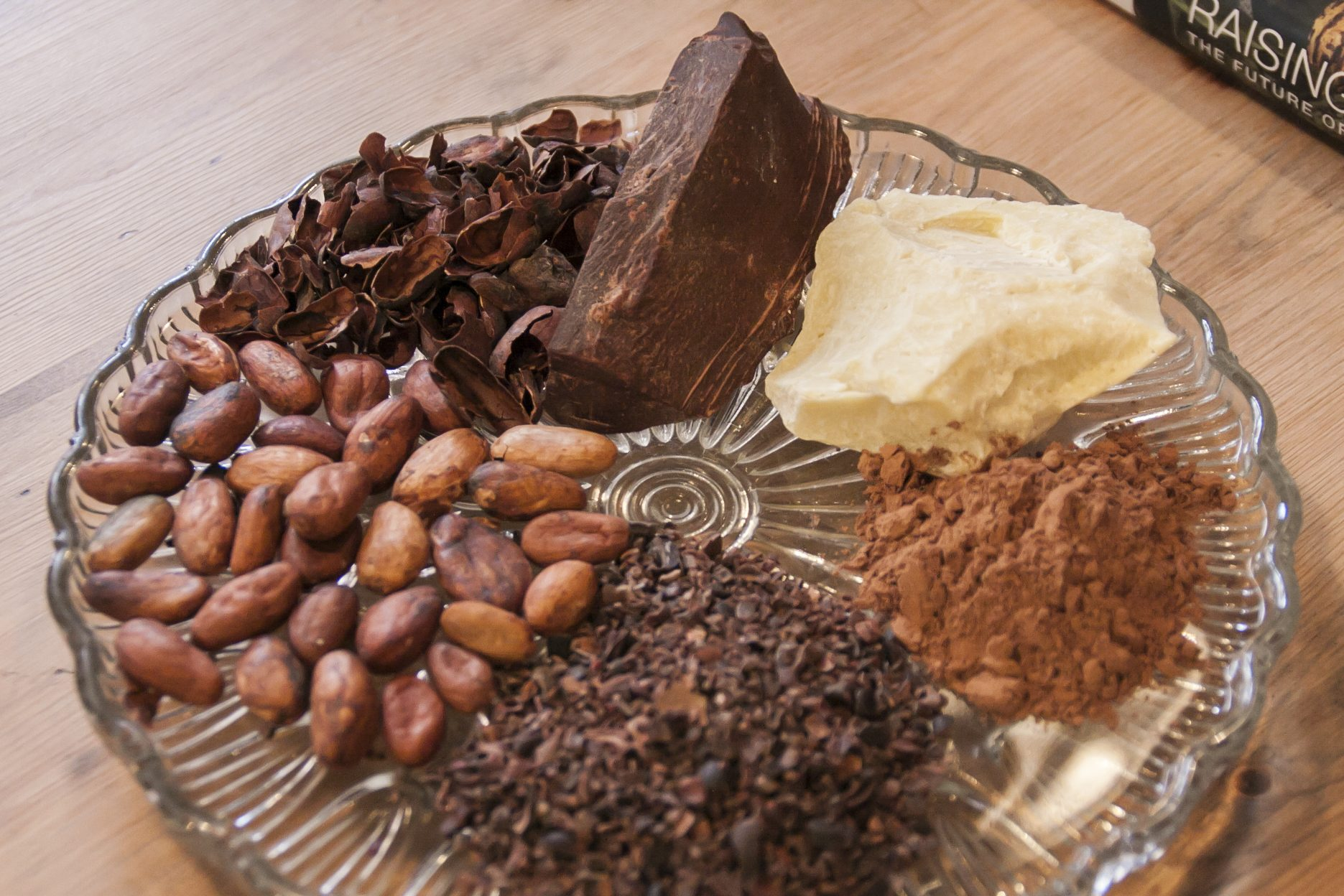 Cocoa-Beans-and-Cacao-butter - Copy - Copy