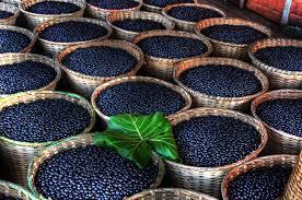 acai berries - Copy