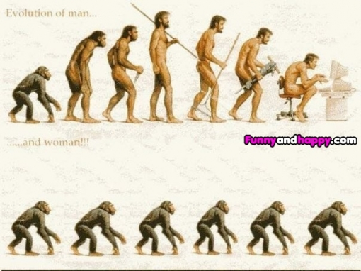 510x510_evolution-of-humans-and-monkeys