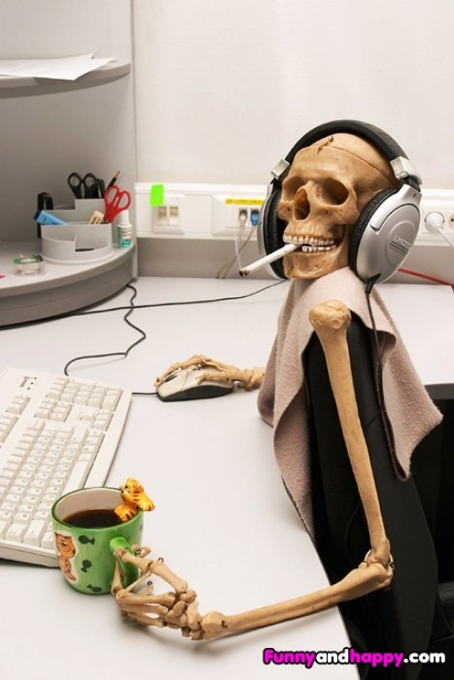 510x510_funny-skeleton-at-the-computer