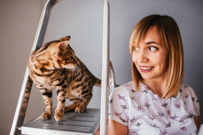 אשה וחתול על סולם