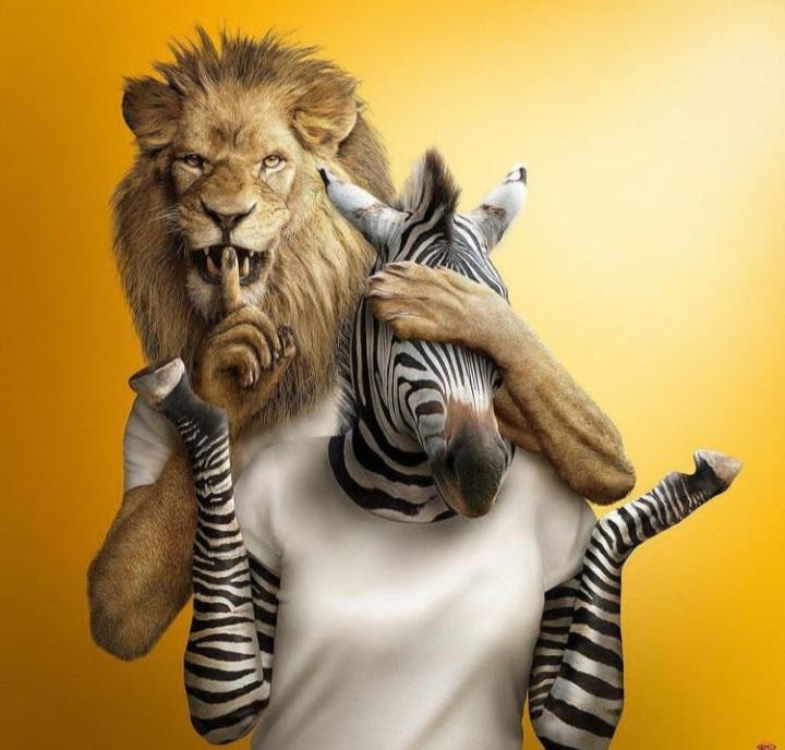 איור של אריה וזברה (מצחיק)