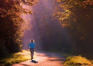 ריצה ביער