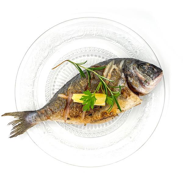 דג דניס שלם