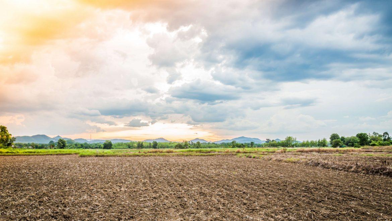 קרקע להשקעה – איך עושים את זה נכון?