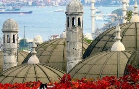 אוסף תמונות של העיר איסטמבול בטורקיה. חובה לראות!