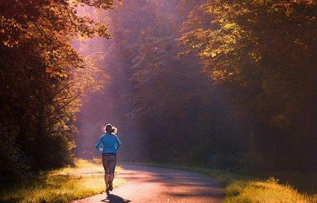 לרוץ ביער – בעד או נגד?